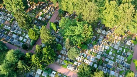 могильная плита : Aerial view of big cemetery. Many tombstones and trees, slow flight
