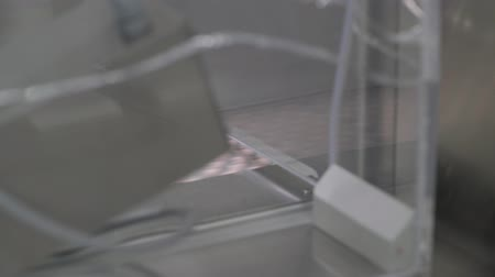 farmacologia : Automated packing at drug production. Closeup slow motion shot of an automated pill packaging machine.Tablets in Packages on a Conveyor. Pharmaceutical machinery for medicine production Pills. Stock Footage