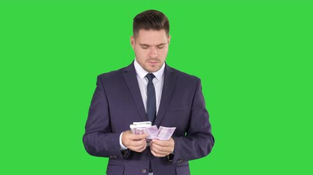 bankjegy : Handsome businessman counting euros on a Green Screen, Chroma Key.