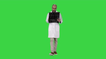 излучение : Doctor reviewing shoulder x-ray scan while walking on a Green Screen, Chroma Key.