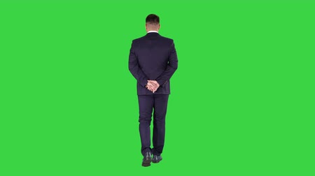 case : Businessman walking and looking around holding hands behind his back on a Green Screen, Chroma Key.