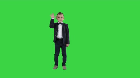 seis : Friendly little boy in a suit says hi and then says bye on a Green Screen, Chroma Key. Vídeos