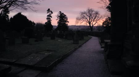 надгробная плита : Morning walk on dark graveyard, look through hedge to see sunrise. Dramatic sky with violet and orange.