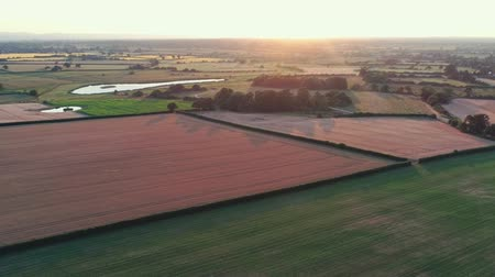 yüksek ova : Aerial view, zoom out move. Beautiful sunset in cheshire, brown and green fields Stok Video