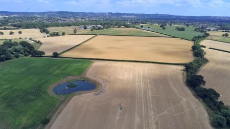 chester : Aerial view, side move. Drone panorama of plains and small pond hidden between fields Stock Footage