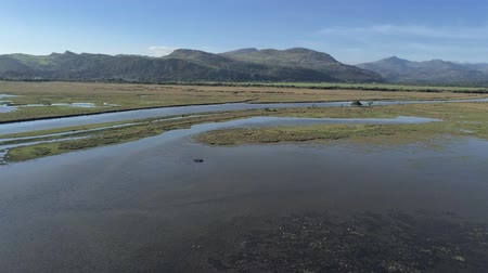 успокаивающий : Aerial view, down move. Drone panorama over Glaslyn reserve wetlands, water and mountains in background in sunny Wales