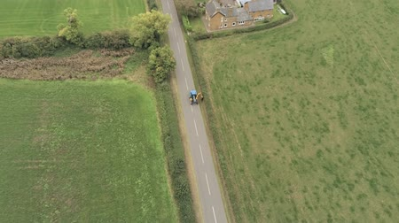 tarmac : Aerial view, down move. Tractor with trimmer trims hedges on straight road between fields