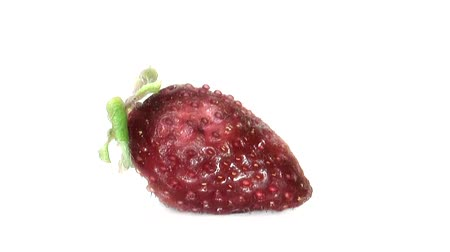 фрукты : Timelapse of single strawberry rotting over white background Стоковые видеозаписи