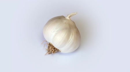 amarelado : Garlic on white background rotation