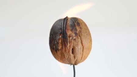 nogueira : Burning walnut