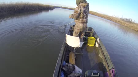 zander : Two man fishing from a boat and catching fish Stock Footage