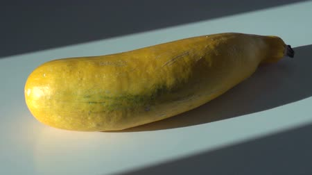 gele courgettefruit Stockvideo