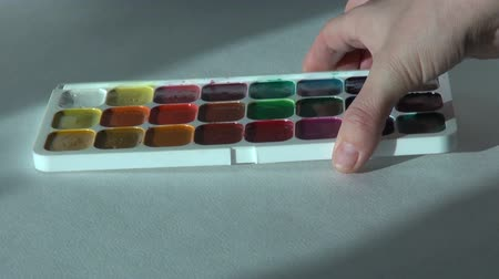 paintbox : watercolor paints set