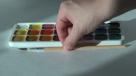 paintbox : Artist woman works with brush and watercolor paints