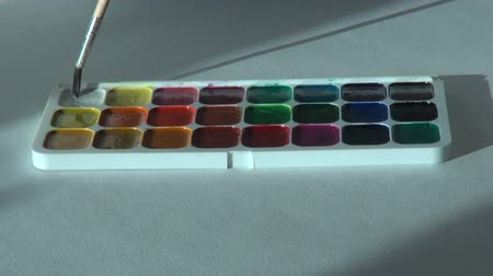 paintbox : white color. Artist works with brush and watercolor paints