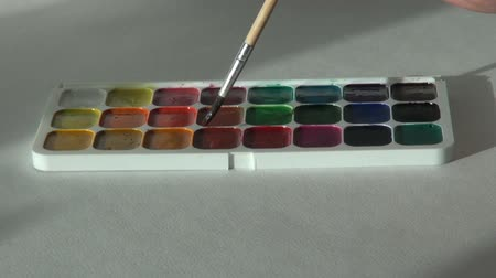 paintbox : red scarlet ruddy color. Artist works with brush and watercolor Stock Footage