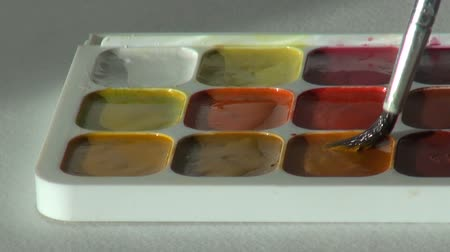paintbox : brown color. close up. Artist works with brush and watercolor pa Stock Footage