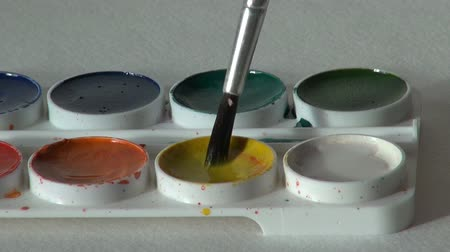 paintbox : yellow color. brush dunk. round watercolor paints set