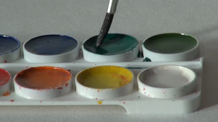 paintbox : green color. brush dunk. round watercolor paints set