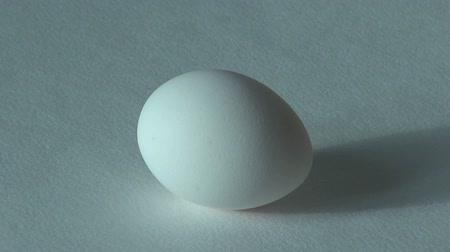 elipse : white chicken egg Poultry farm product Vídeos