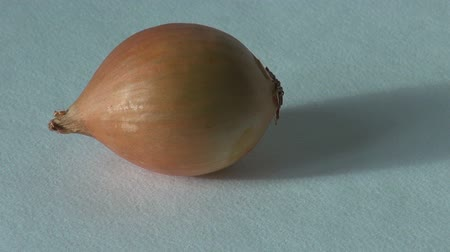 ve slupce : onion farm product, green vegetarian food