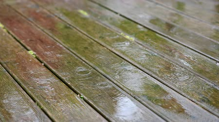 escorregadio : Footage of raindrops falling on wooden porch. Stock Footage
