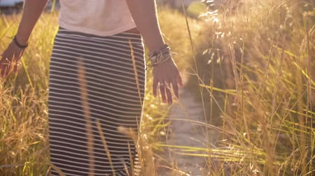 sunshine : Woman going through ferny path. Girl hand touching grass. Sun lens flare