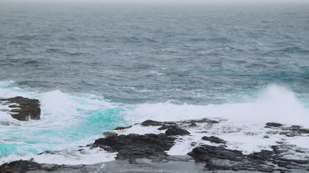 yarımada : 4k video footage of the ocean waves washing up on a black volcanic rocks on Cabo verde Stok Video
