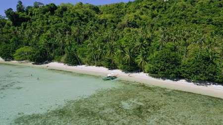 laagtij : 4k Aerial drone circle around banca boat at shallow clear water on paradise tropical beach surrounded by coconut palm trees. Exploring El Nido, Palawan, Philippines
