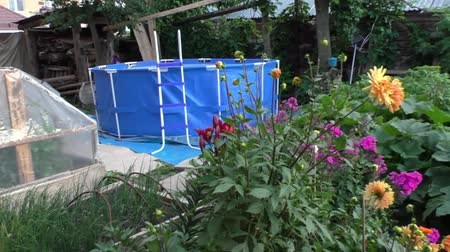 bordo : pool Blossoming garden with greater dark blue