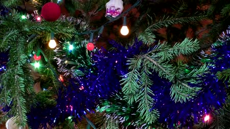 prickly : Toys and garlands on a holiday christmas tree