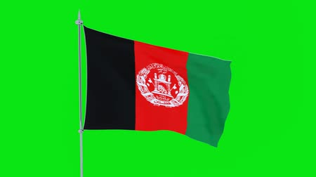 guyana : Flag of the country of Afghanistan flutters on green background. 3D rendering Stock Footage