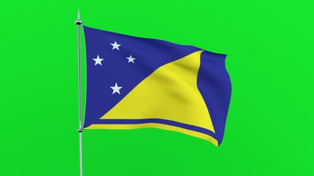 zuidpool : Flag of the country Tokelau on green background. 3D rendering Stockvideo