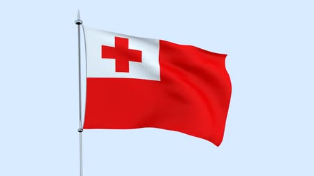 zuidpool : Flag of the country Tonga flutters against the blue sky. 3D rendering