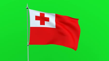 guyana : Flag of the country Tonga on green background. 3D rendering