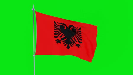 albanie : Flag of the country Albania flutters on green background. 3D rendering