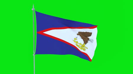guyana : Flag of the country American Samoa flutters on green background. 3D rendering Stock Footage