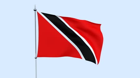 guyana : Flag of the Trinidad and Tobago flutters against the blue sky. 3D rendering