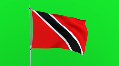 guyana : Flag of the country Trinidad and Tobago on green background. 3D rendering