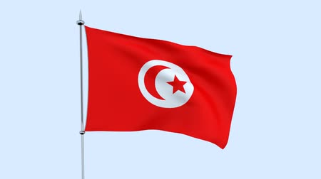 guyana : Flag of the country of Tunisia flutters against the blue sky. 3D rendering