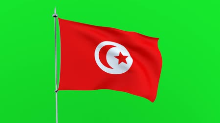 mastro de bandeira : Flag of the country of Tunisia on green background. 3D rendering