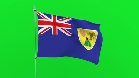 guyana : Flag of the Turks and Caicos Islands on green background. 3D rendering