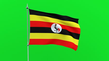 guyana : Flag of the country Uganda on green background. 3D rendering Stock Footage