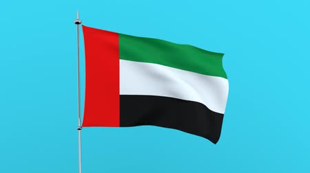 guyana : Flag of the United Arab Emirates on blue background. 3D rendering Stock Footage