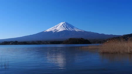 à beira do lago : Mt. Fuji of Blue Sky from Oishi Park in Lake Kawaguchi 03062020 4k.mov Stock Footage