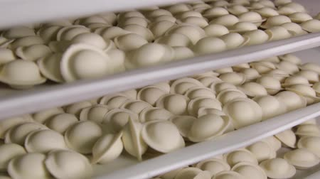 meat pockets : Several rows of dumplings close-up, the camera moves from bottom to top Stock Footage