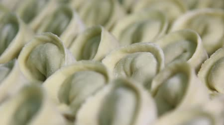 meat pockets : Dumplings with meat lie in rows on a tray, close-up, production of ravioli Stock Footage