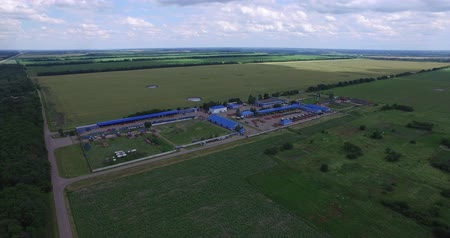 kombajn : the territory of agro-industrial complex with the corn fields and technical buildings