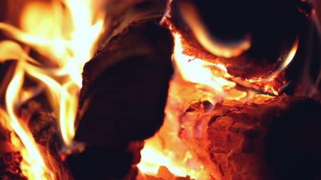 chamejante : Firewood burning in stove