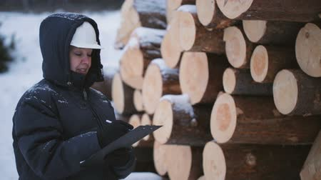 zimní : Worker with tablet against pile of logs